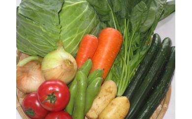 17009.新鮮野菜の詰合せセット