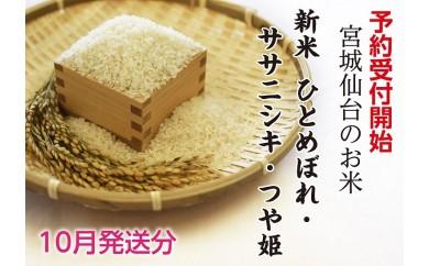 B129 新米予約受付! 宮城仙台のお米20kg  ひとめぼれ・ササニシキ・つや姫(10月発送)