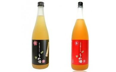[№5931-0031]八海山 梅酒 720ml 2本