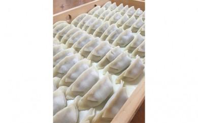 [№5873-0236]冷凍花餃子110個(22個入×5袋)