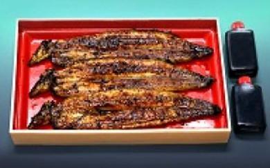 3-6 本部うなぎ屋 鰻の蒲焼(3尾)