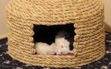 D29002 愛猫の和風高級マンション!国東猫ちぐら(シングル)・通