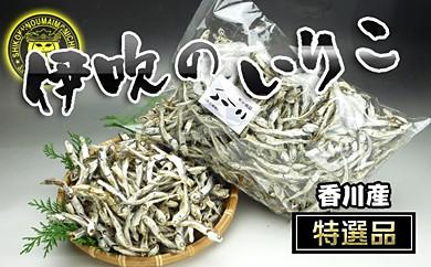 AY22 瀬戸内海産[伊吹のいりこ]500g×2袋【50pt】