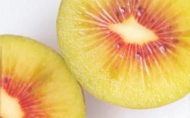 [№5885-0037]果樹園「久安」の赤くて甘いキウイフルーツ2箱