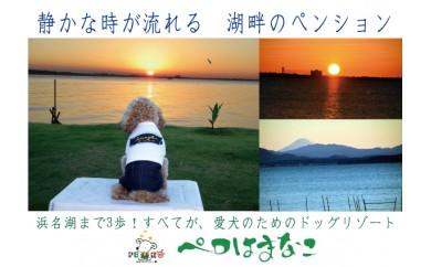 [№5810-0160]愛犬同伴 絶景湖畔の宿 ペロはまなこ宿泊プラン