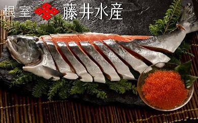 CB-09003 【北海道根室産】<鮭匠ふじい>いくら・秋鮭姿切身[174061]