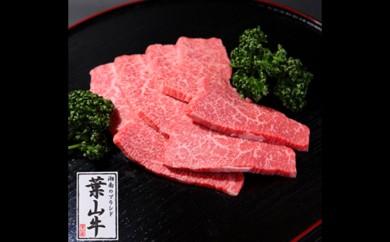 [№5875-0166]冨士屋牛肉店がお届けする湘南ブランド牛の赤身霜降り焼肉用