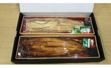 576 鹿児島県大隅産特大ウナギ蒲焼と白焼きセット