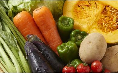 HMG150 【農家直送】七時雨山麓の季節の野菜セット【定期便4ヶ月】
