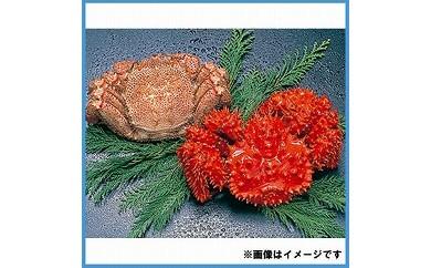 CB-34001 【北海道根室産】花咲がに毛がにセット【GCF】[330462]