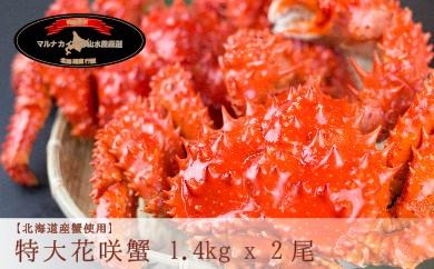 CD-12003 【北海道根室産】ボイル花咲蟹姿2尾[279706]