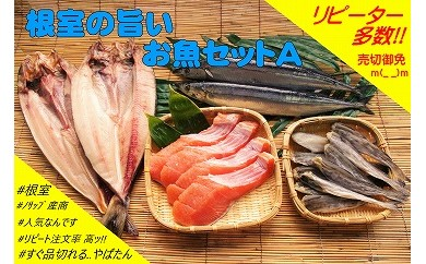 CA-03001【北海道根室産】根室の旨いお魚セットA(ほっけ・さんま・こまい・鮭)[194698]