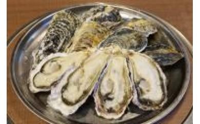 13.深層水仕込みの殻付真牡蠣【10個セット】