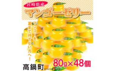 039_ht <宮崎県産マンゴーゼリー48個>1か月以内に順次出荷