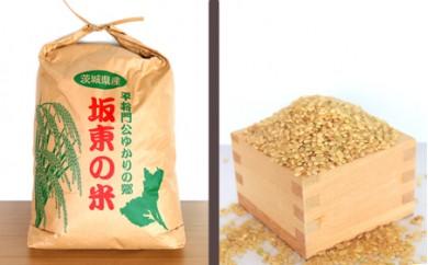No.147 【平成30年産】茨城県坂東産 コシヒカリ10kg(玄米)