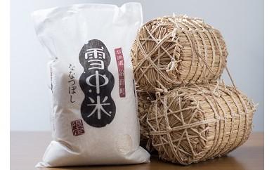 【10-50】雪中米(ななつぼし)【10kg】(29年産)
