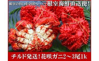 CA-70001 【北海道根室産】根室海鮮の茹でたて「チルド便」花咲ガニ2~3尾(1kg)[333127]