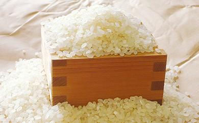 307 29年産米(無洗米)「美里吾平(うましさとあいら)イクヒカリ10kg+小袋2kg