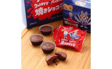 ウルトラマン焼きショコラ 10個入×2箱【1016658】