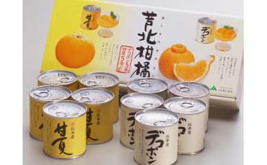 №18-10芦北柑橘(10缶入)