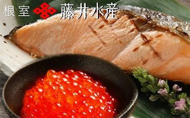 CA-23002 【北海道根室産】<鮭匠ふじい>時しらず鮭・いくら醤油漬[334842]
