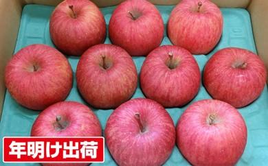 [№5731-0139]【年明け出荷】青森県親子三代最高位の「サンふじ」家庭用約6kg