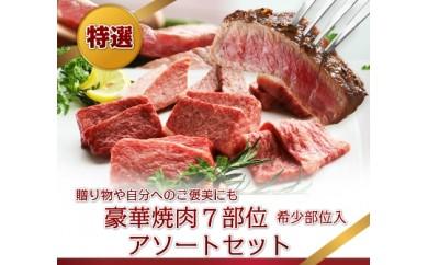 飛騨牛 焼肉アソートセット 7種類の希少部位を食べ比べ♪ 牛肉 和牛 飛騨市推奨特産品[D0021]
