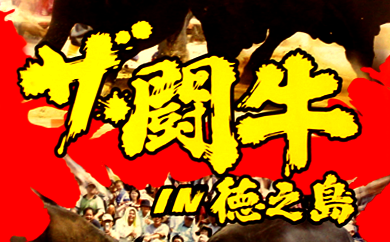 B-14 徳之島伝統闘牛大会DVD(H29.5.2)