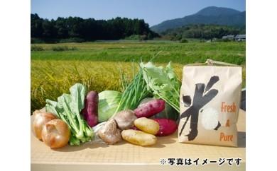 No.037 夏野菜のおまかせ8種類詰め合わせとお米(ひのひかり)3kgセット