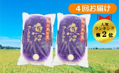 【D2903】魚沼産コシヒカリ 特別栽培米定期便40kg(10kg×4回)