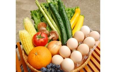 A416 むなかた旬のお任せセット(野菜・フルーツ・卵)