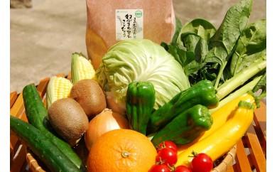 A419 むなかた旬のお任せセット(野菜・フルーツ・お米)