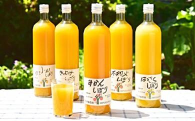 [№5745-0331]伊藤農園5種のみかんジュースお得なサイズ