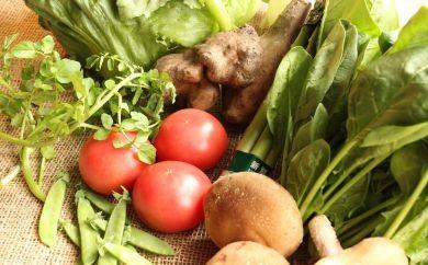 遠野ふるさと野菜便