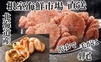 CB-14008 根室海鮮市場<直送>北海道産浜ゆで毛がに400~550g×4尾[338315]