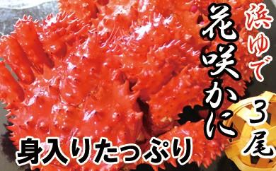 CB-16007 【北海道根室産】浜ゆで花咲ガニ姿600g前後×3尾[344351]