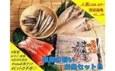 CA-03002 【北海道根室産】根室の旨いお魚セットB[338184]