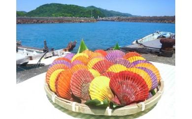 【AF-6】土佐清水の長太郎貝(ヒオウギ貝)【32個入】