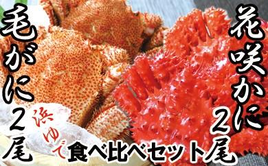 CC-16001 【北海道根室産】浜ゆで毛ガニ・花咲ガニ姿(各2尾)食べ比べセット[344359]