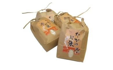 12 これぞ自然の恵み! おいしい多賀のお米 キヌヒカリ