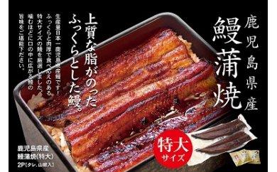 B-114 鹿児島県産鰻蒲焼(冷凍)