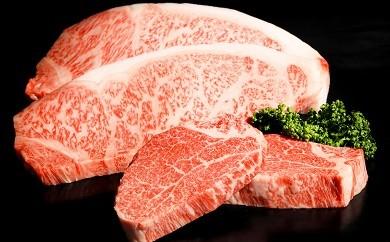 G-19 最高級ブランド銘柄!!佐賀牛「サーロインステーキ」 200g×2枚&「フィレステーキ」 100g×2枚