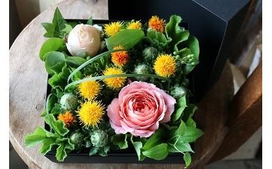 AM03 山形の県花 紅花 花織りプレミアム