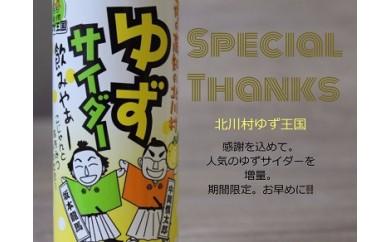 ★限定★ゆずサイダー30本【北川村ゆず王国】