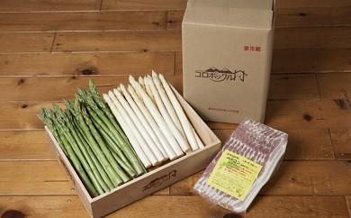 有機栽培極太グリーン&ホワイトアスパラ&無添加ベーコン:配送4~5月末