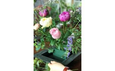 NI14 定期便 おうちでお花を楽しむレッスンキット4か月