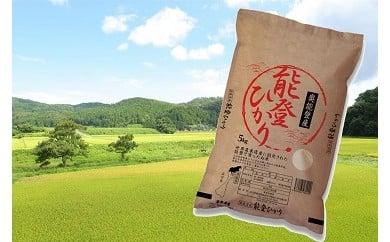 能登ひかり5kg精米【世界農業遺産に認定された能登で育ったお米】