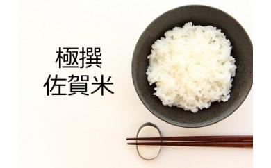 佐賀県上場こしひかり5kgと初摘み佐賀焼のりセットプレミアム