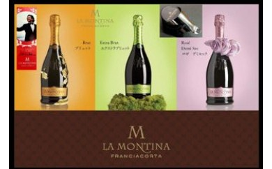 206 イタリアの高級スパークリングワイン・スプマンテ「フランチャコルタ」1本(ギフト箱入)