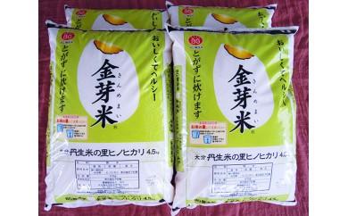 No.458 大分丹生米の里ヒノヒカリ金芽米(4袋)【30pt】